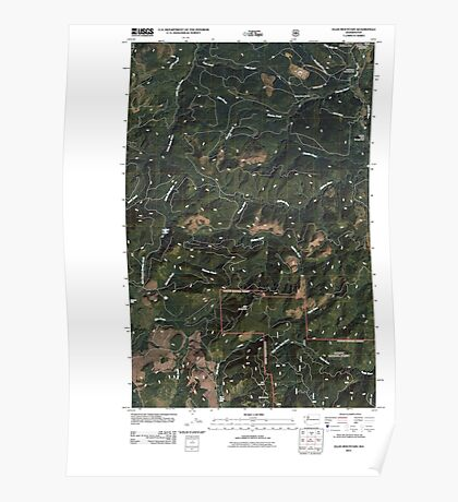 USGS Topo Map Washington State WA Ellis Mountain 20110506 TM Poster