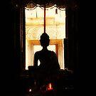 buddha by Lynn Hughes