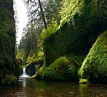 Punchbowl Falls - Mt. Hood N. F. by Mark Heller
