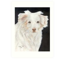 Mini Aussie Dog Red Merle Cathy Peek Pets Art Print