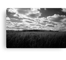 Through the fields after the rain Canvas Print