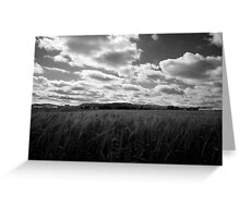 Through the fields after the rain Greeting Card