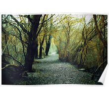 Yellow Path to Nowhere Poster