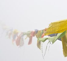 Prayer Flags by Kasia Nowak