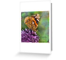 The Red Admiral. Greeting Card