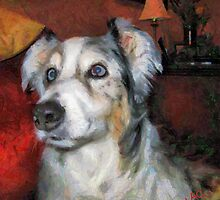 Australian Shepherd - Mr. Buttons by doggylips