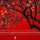 #1 Banner by peterrobinsonjr