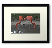 Try Yoga Framed Print