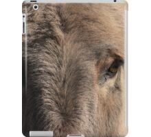 Donkey Eyes iPad Case/Skin