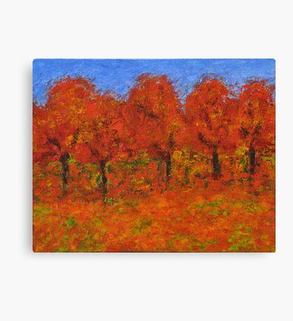 016 Fall Colors Canvas Print