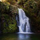 Whataroa Falls by Ken Wright