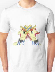 Flim Flam My Little Pony Brony Pegasister T-Shirt