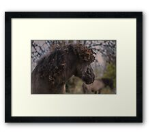 Natty Dread Framed Print