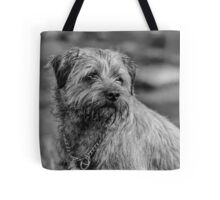 Border Terrier Dog Photograph In Black And White Tote Bag