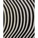 "IPhone case ""Stripes""... by Julian Escardo"