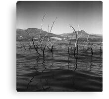 Lake Roosevelt View Canvas Print