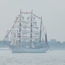 Tall Ships Parade, Fleet Week, New York Harbor, New York City, May 23, 2012 by lenspiro