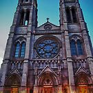 Cathedral Basilica of Immaculate Conception by anorth7