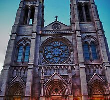 Cathedral Basilica of Immaculate Conception by Adam Northam