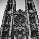 Cathedral Basilica of Immaculate Conception B/W by anorth7