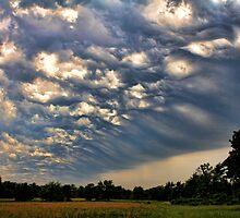 Storm Chaser Wannabe by Carolyn  Fletcher