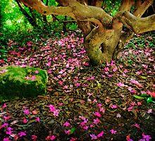 Under the Rhody Tree by Lynnette Peizer