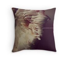 LAURA SHAFER PHOTOGRAPHY #505 Throw Pillow
