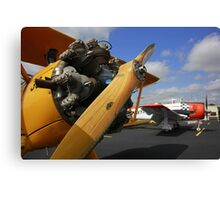 WWII Airplane - PT-17 STEARMAN Canvas Print