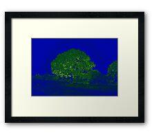 PRECIOUS TREE Framed Print