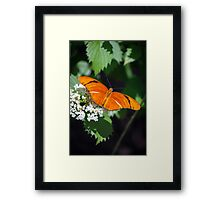 Julia At Rest Framed Print