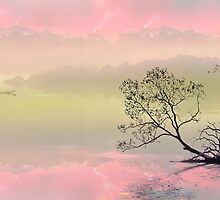Gondolier by Igor Zenin