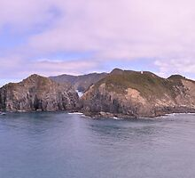 Head of the Marlborough Sounds, New Zealand by Bearfoote