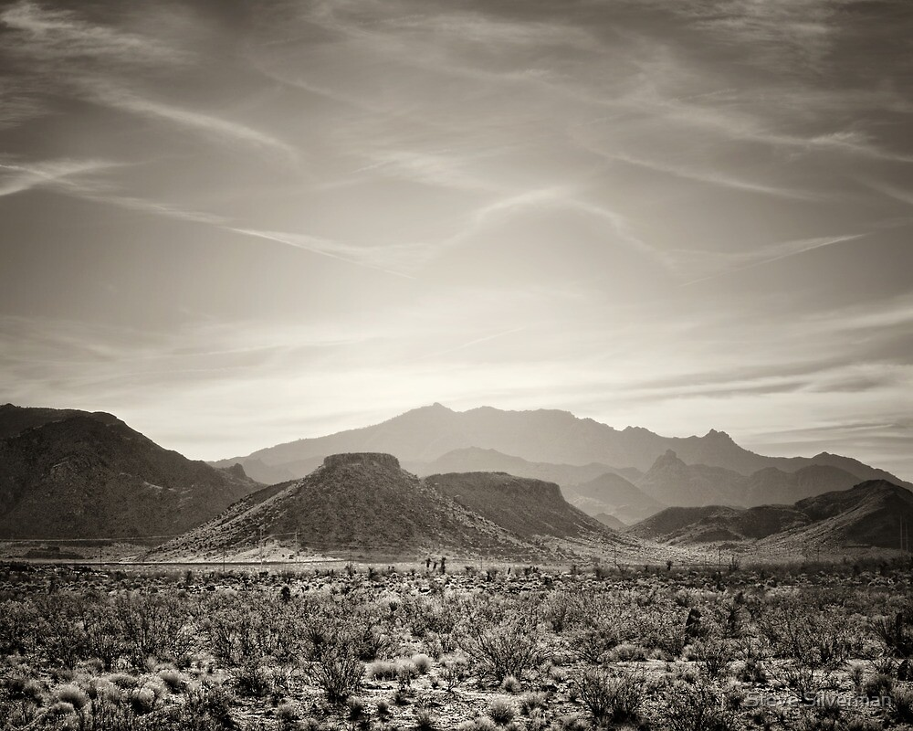 Mojave Arizona by Steve Silverman