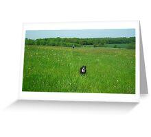A Run in the Sun Greeting Card