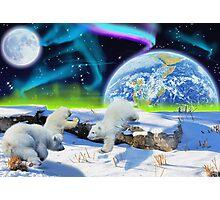 Three Playful Polar Bear Cubs & Aurora Earth Day Art Photographic Print