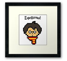 Pixel Potter Framed Print