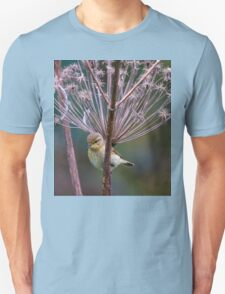 Young Willow Warbler sitting amongst Cow Parsley T-Shirt