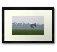 At The Edge Of The Mist Framed Print