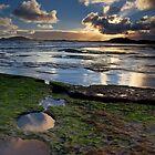 Magic Hour Garth's Beach by Kylie  Sheahen