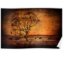 Outback Country Poster