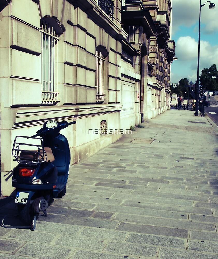 The Streets of Paris by Natasha M