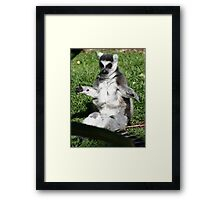 The one that got away... Framed Print