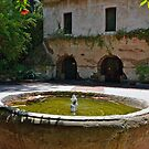 Looking past the fountain into the court yard at El Molino Viejo. The Old Mill. by philw