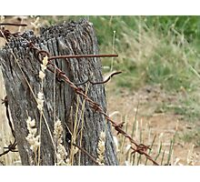 Old Barbed Wire Fence Photographic Print