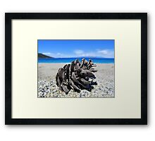 Pine Cone - Beach Surrounded by Pine Trees Framed Print