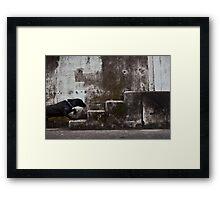 Urban animal Framed Print