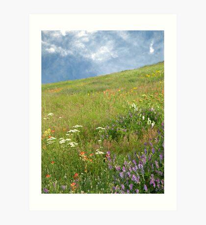 Spring Hillside Art Print