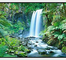Tranquil Waters, Great Otway National Park VIC by Chris Munn