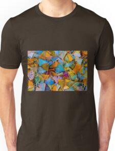 Fallen Ginkgo Leaves Unisex T-Shirt