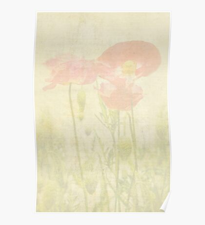 Poppies Monet Style Poster